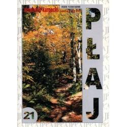 Płaj 21. Almanach Karpacki (jesień 2000)