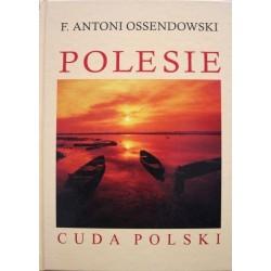 Polesie. Cuda Polski