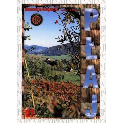 Płaj 27. Almanach Karpacki (jesień 2003)