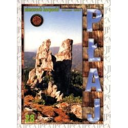 Płaj 28. Almanach Karpacki (wiosna 2004)